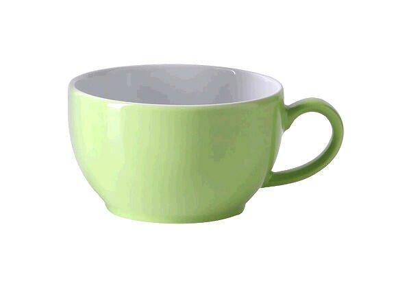 Dibbern Kaffeetasse 0,25 l Solid Color maigrün