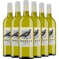 6er Aktion Hofgut Gönnheim Riesling   1L 2020 – Weinpakete – wei…, Deutschland, trocken, 6l